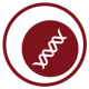 graphic icon in dark red of a cell with a double helix within it